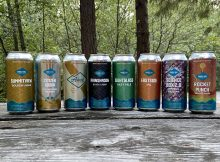 A lineup of beers from Single Hill Brewing from October 2020.