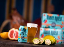 image of Guava Rodeo Sour Ale courtesy of Oskar Blues Brewery