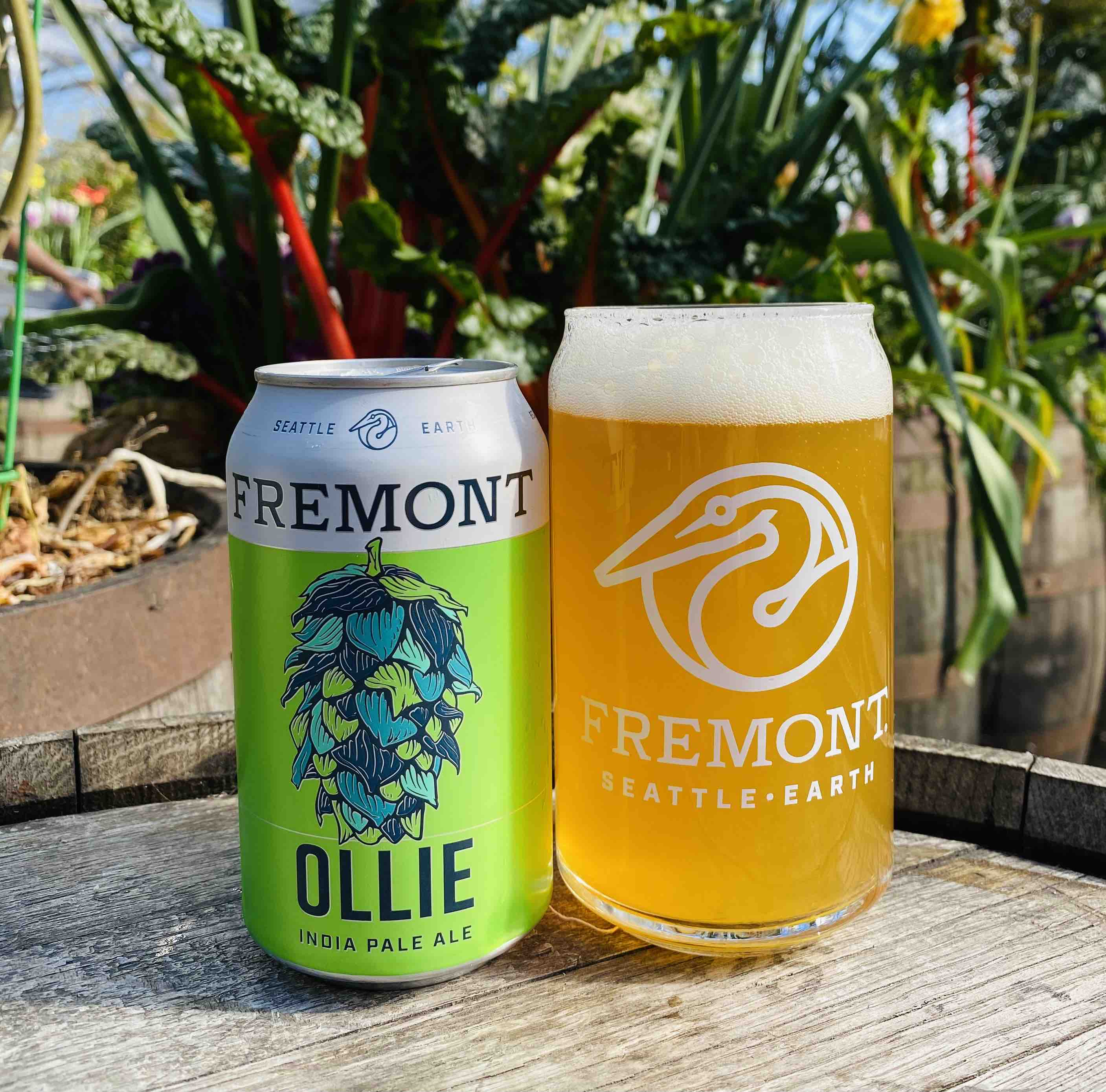 image of Ollie India Pale Ale courtesy of Fremont Brewing