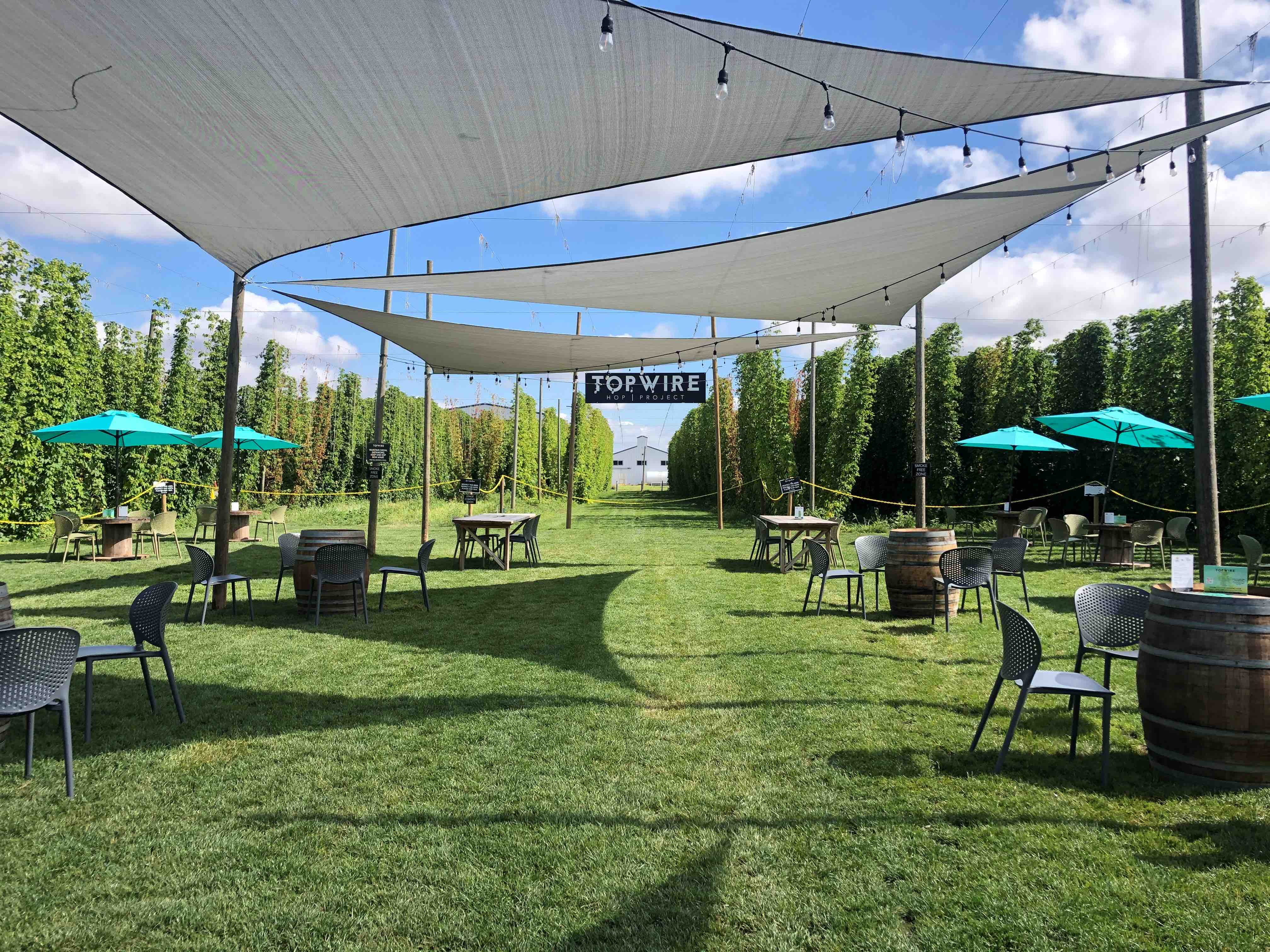 The Top Wire Hop Project beer garden when the hops bines are in full growth mode. (image courtesy of TopWire Hop Project)
