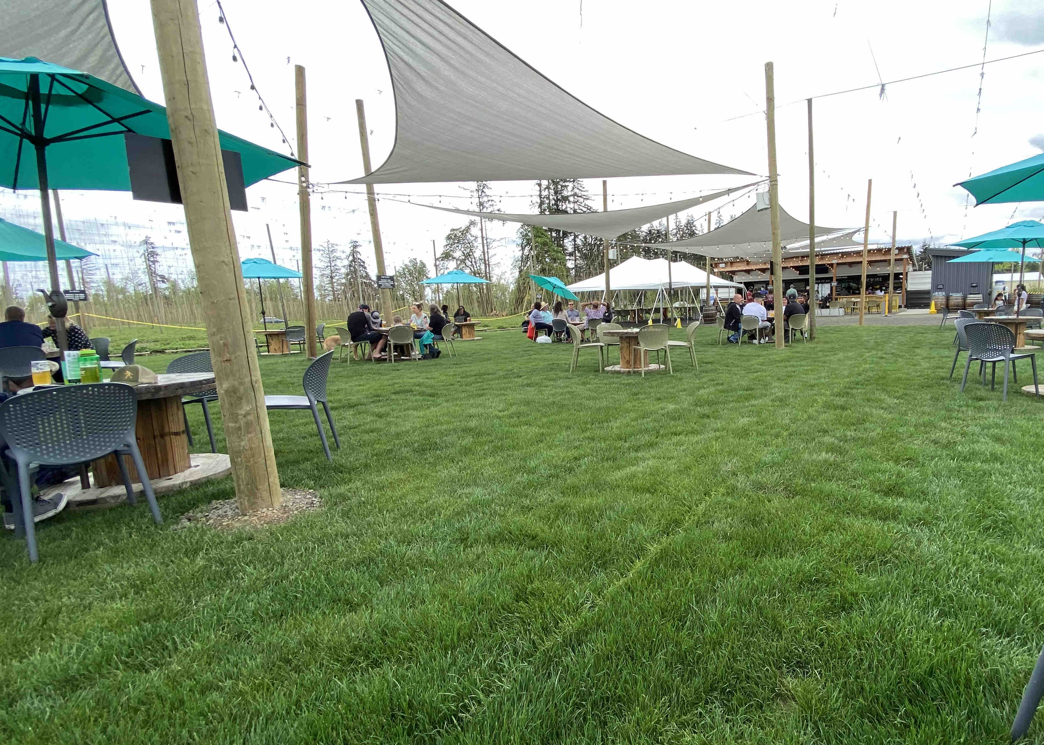The lush lawn at TopWIre Hop Project.