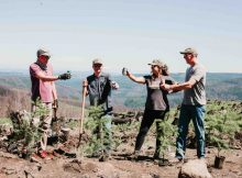 Oregon Parks Forever and four Oregon craft beverage companies partner for Wildfire Recovery. (image courtesy of Oregon Parks Forever)