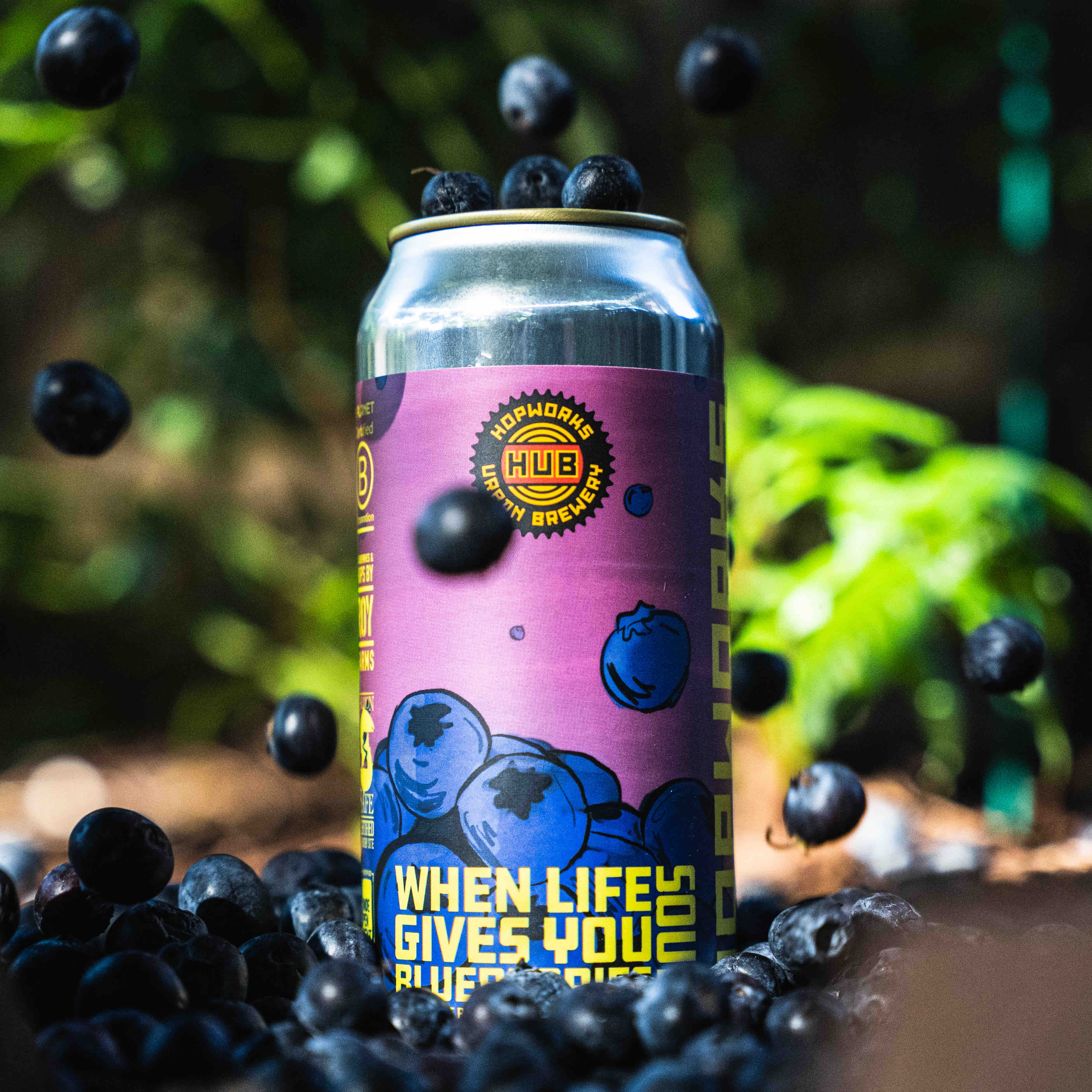 image of When Life Gives You Blueberries Sour courtesy of Hopworks Urban Brewery