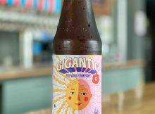 image of Let the Sun Beat Down Upon My Face courtesy of Gigantic Brewing