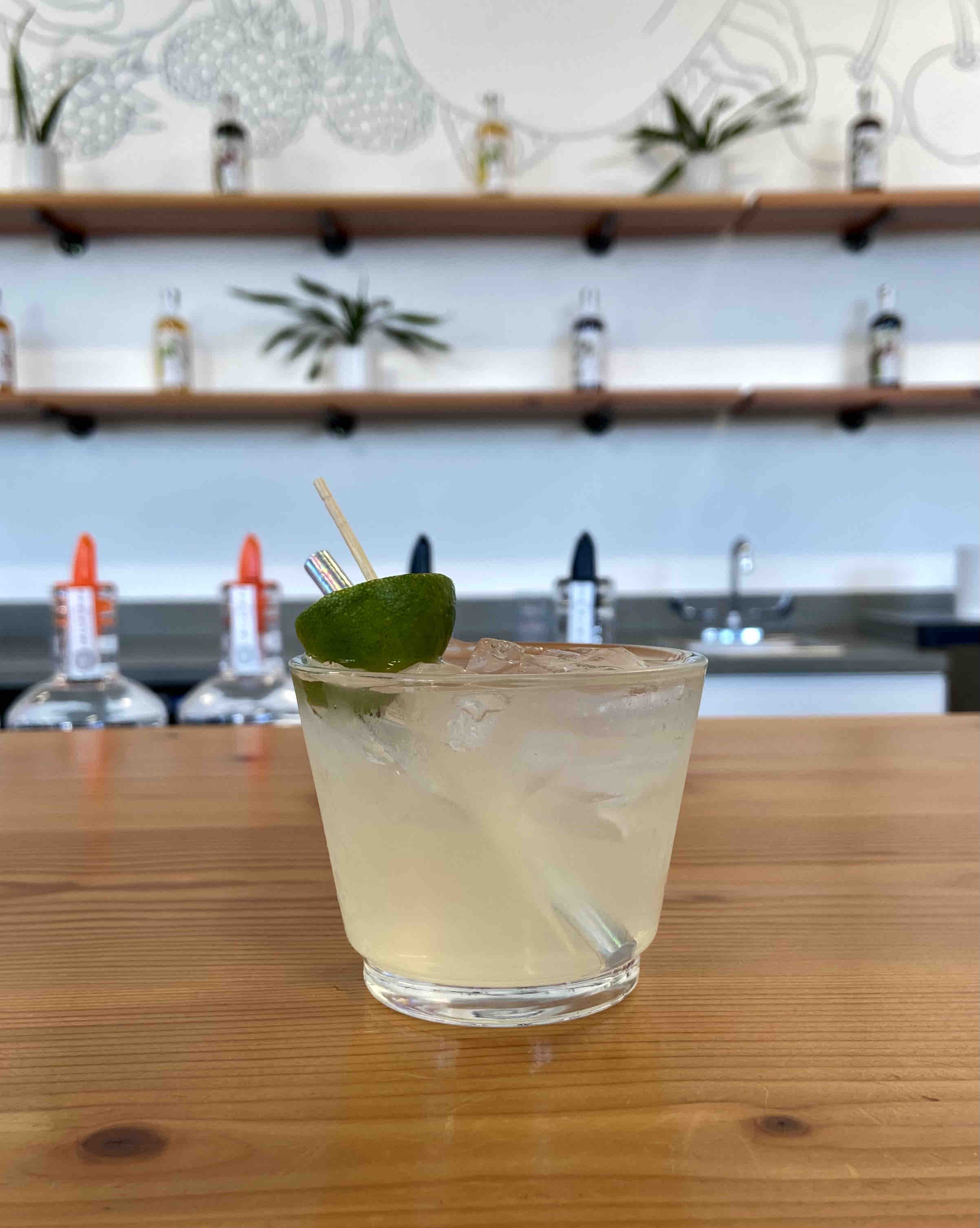 Wild Roots Spirits Cucumber & Grapefruit Gin with club soda.
