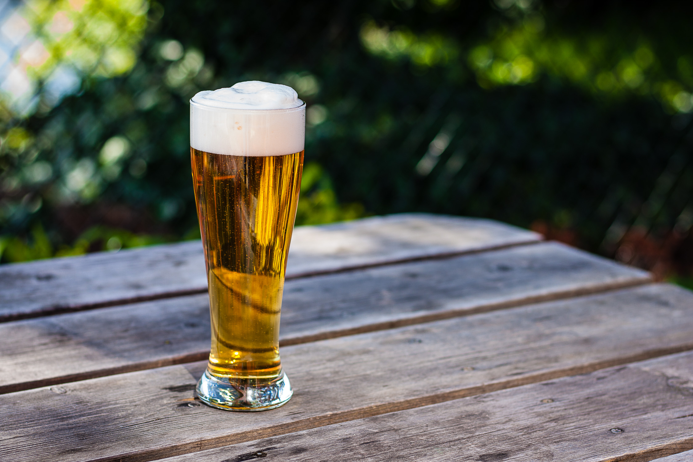 image of Strata Single Hop Lager courtesy of Chuckanut Brewery