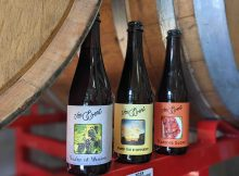 Von Ebert Brewing will release three new beers from its Heritage Beer program on Saturday: Realm of Illusion, Flaming Glow, and Under the In Between. (image courtesy of Von Ebert Brewing)